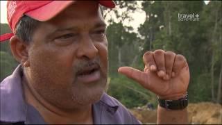 Самые Страшные и Жуткие Дороги в Мире 'Самые опасные путешествия  Гайана'