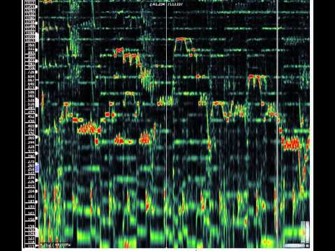 Spectrum analysis of Superstitious (Europe) guitar solo