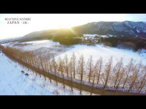 【 癒しの絶景 4K空撮 】    『雪景色  ~ 夕暮れの メタセコイヤ並木 ~ 』 Superb view of Japan  2017