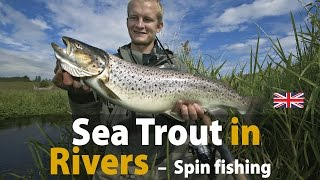 sea trout in rivers spin fishing