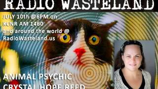July 10th 2017 - Pet Psychic Crystal Hope Reed