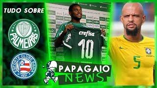 Felipe Melo na seleção Brasileira? | Palmeiras e Gambá nos EUA | Verdão recebe BOLADA da Turner e+