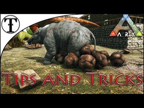 Why And How To Tame A Phiomia :: ARK : Survival Evolved Tips And Tricks