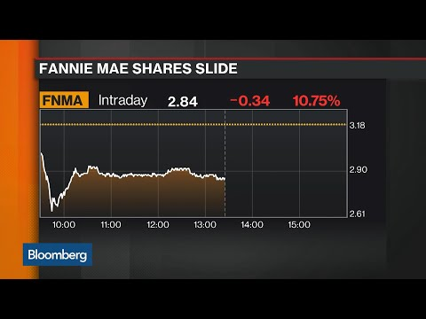mnuchin-dims-investor-hopes-on-fannie-mae-and-freddie-mac