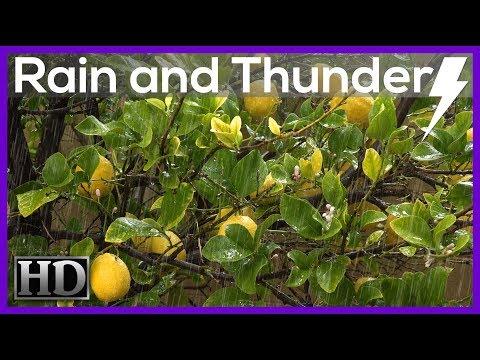 ►Rain Sounds 10 hours. REAL RAIN and Thunder Sounds HD VIDEO, actual rain (Insomnia) SleepDroid