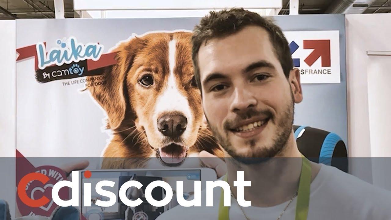 CES 2018: Le robot compagnon pour chien CamToy | Cdiscount