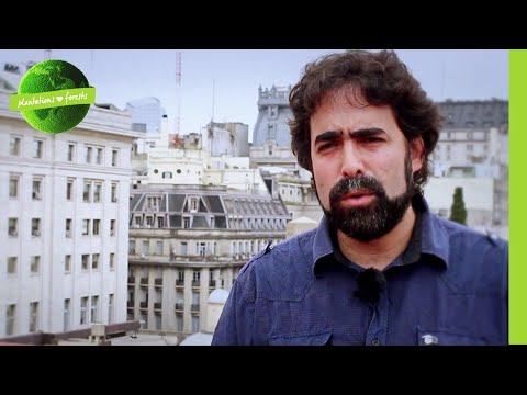 Plantations versus Grasslands.  PlantNation Argentina & Uruguay.
