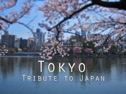 Tribute to Japan. Tokyo Metropolis. 東京。