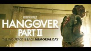 Hangover Part 2 Video Review