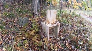 Diy Trap Building - Trap To Catch Animals Alive