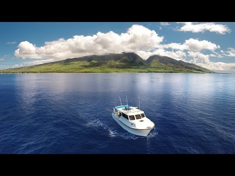 Maui Bottom Fishing With Maui Fun Charters