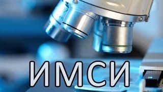Технология ИМСИ | Клиника ЭКО «АльтраВита»(ИМСИ (англ. IMSI -- intracytoplasmic morphologically normal sperm injection -- интрацитоплазматическая инъекция морфологически нормальн..., 2014-04-01T08:28:57.000Z)