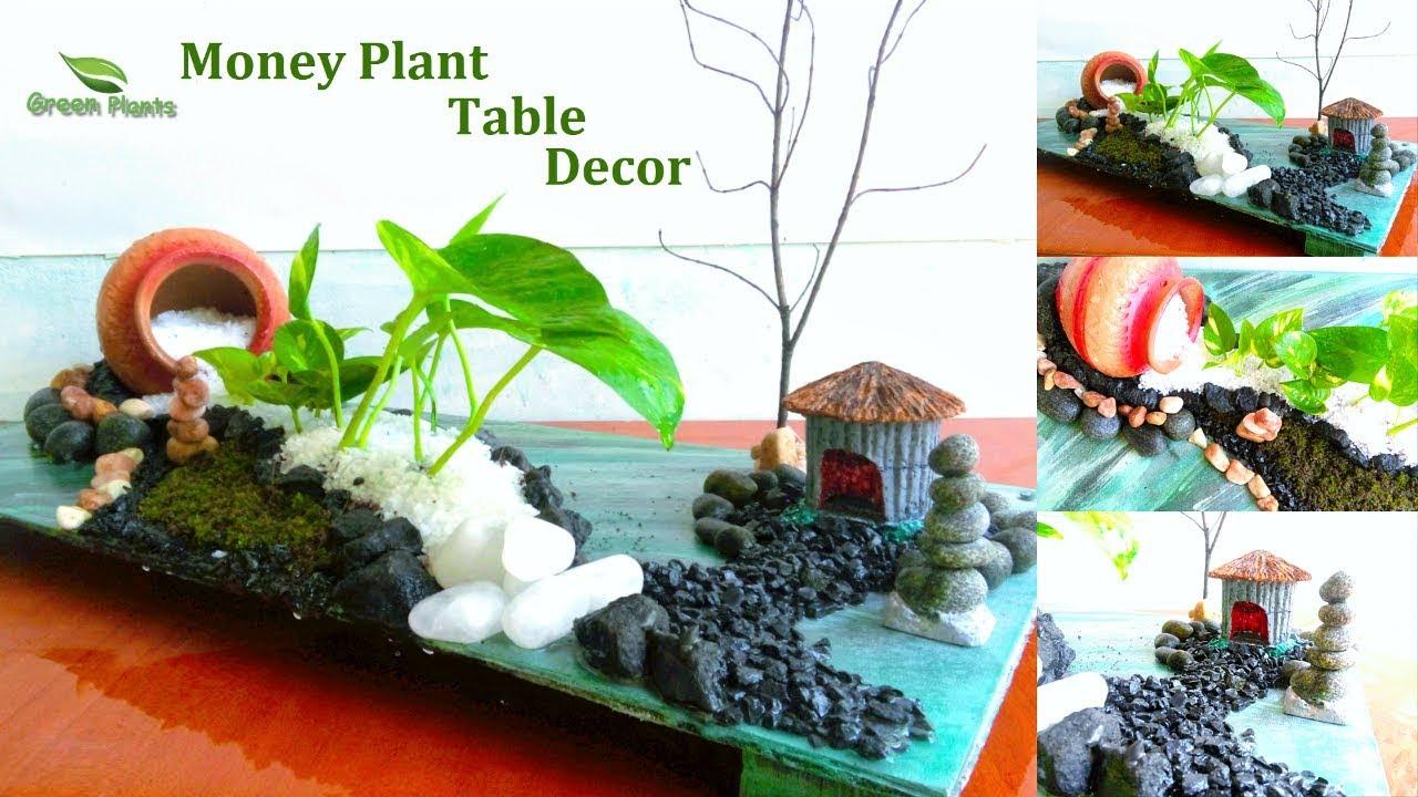 Money Plant Table Decoration | Money Plant Growing Ideas | Money Plant Table  Top Decor//GREEN PLANTS