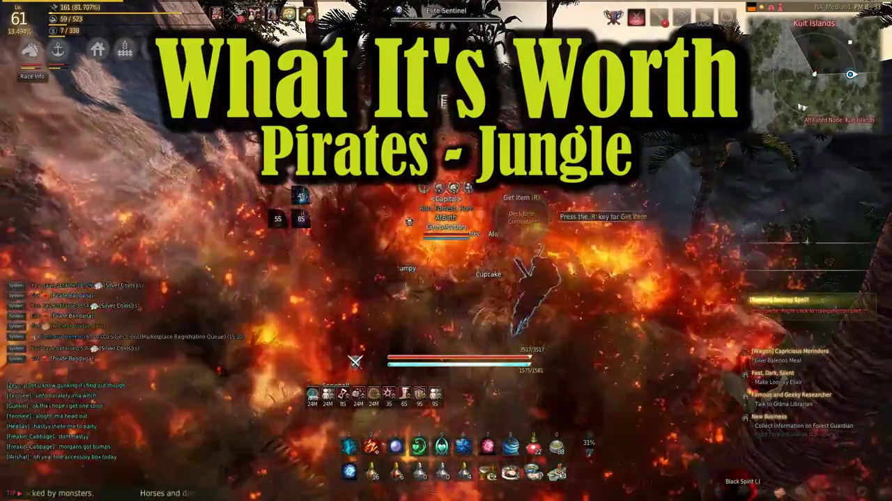 19 Mil an Hour - Pirates Jungle Rotation - What it's Worth - Black Desert  Online