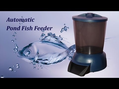 Automatic Fish Feeder For Pond Fishes
