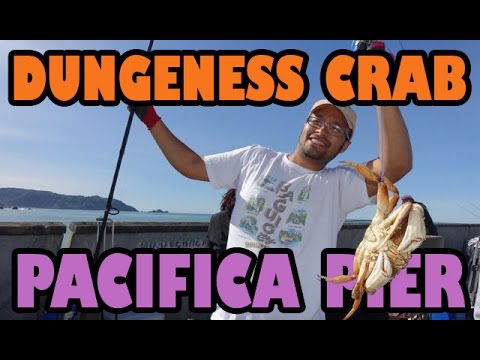 How To Use Crab Snares | Crabbing With A Fishing Rod!