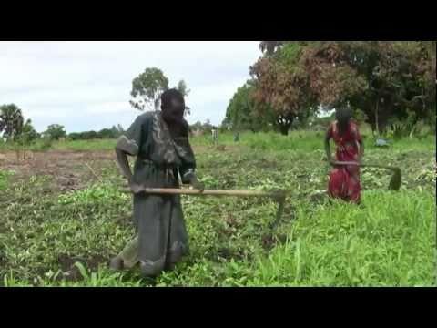Raising Voices - Uganda (UN Trust Fund grantee)