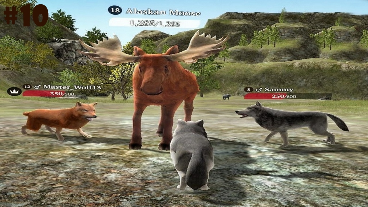 The Wolf Online Simulator -Hunt Real Animals- Android / iOS - Gameplay  Episode 10