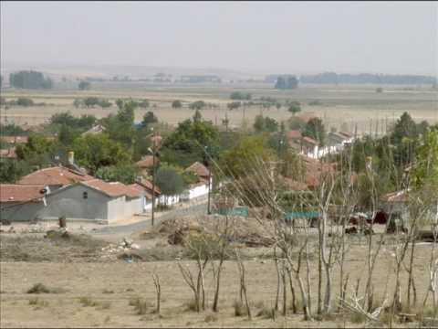 Abbashalimpasa City