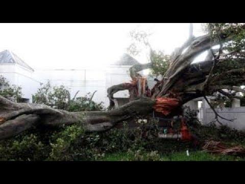 Assessing Irma's impact on insurance companies