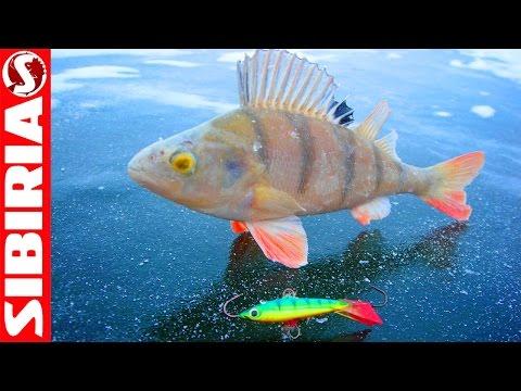 Рыбалка. Снасти и способы ловли рыбы, фото и видео