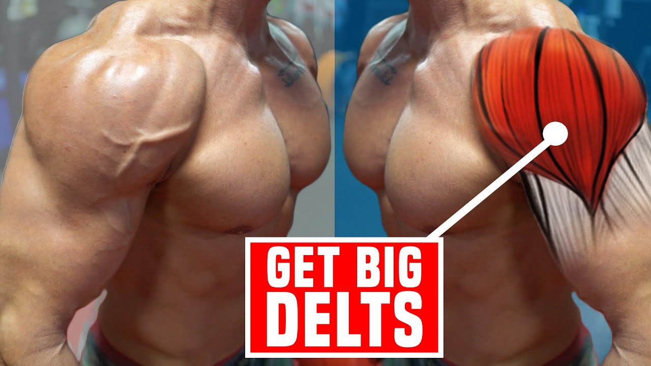 Download 3 Forgotten Shoulder Exercises For CAPPED Delts!