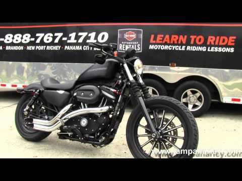 harley davidson xl883n funnydog tv. Black Bedroom Furniture Sets. Home Design Ideas