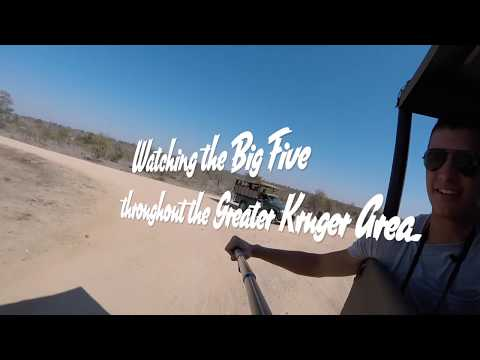 South Africa 2016 - Volunteering for Africa's Big 5 With African Impact