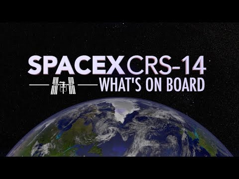 SpaceX's CRS-14 Mission to the Space Station: What's On Board?