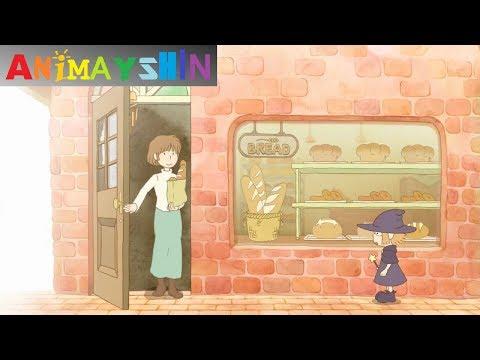 Out of Sight - Animayshin