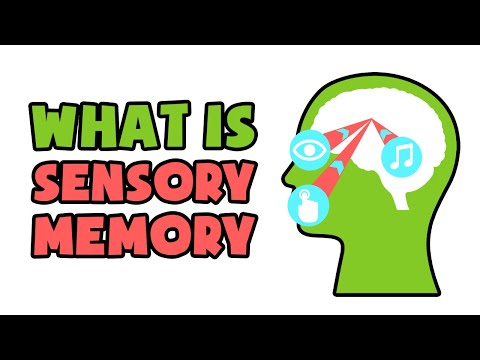What is Sensory Memory | Explained in 2 min