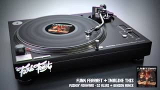 Funk Ferret & Imagine This - Pushin
