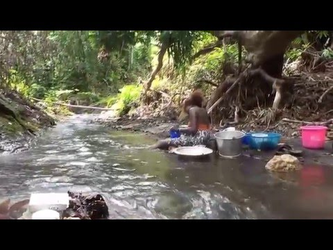 Rarongozo, Solomon Islands Video Preview