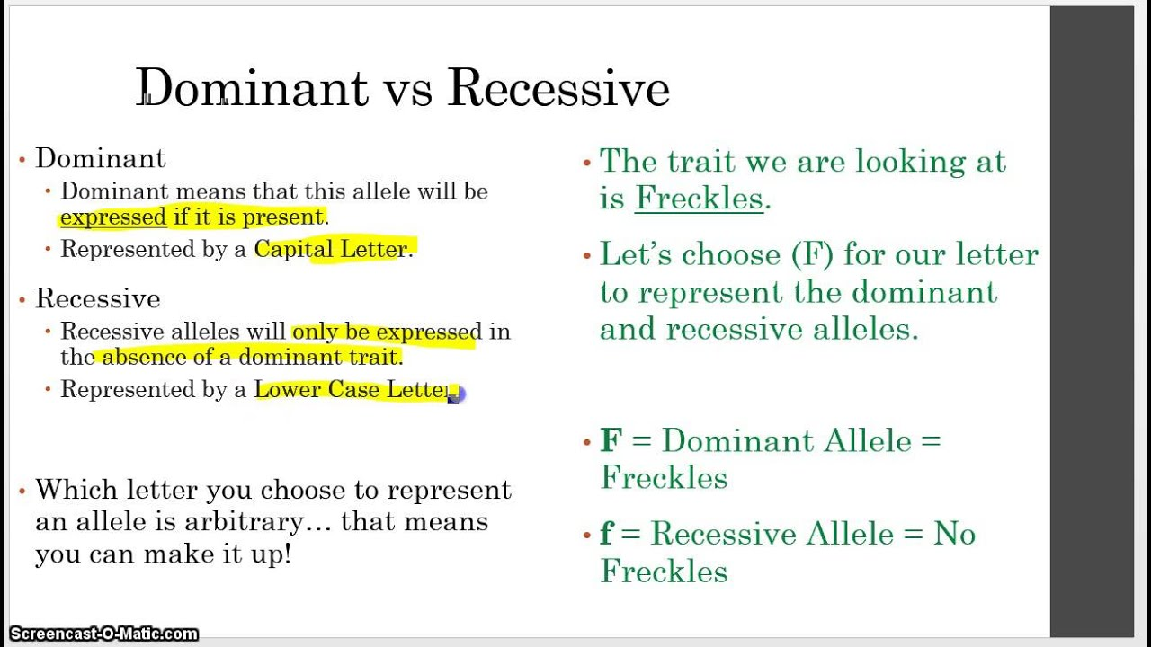definition of dominant and recessive gene Recessive alleles are the opposite of dominant alleles since dominant traits mask them, an organism can only have the characteristics of a recessive trait if it has two alleles of the gene.