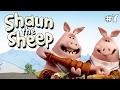 Shaun The Sheep -  Saturday Night Shaun S1e6 (dvdrip Xvid) video