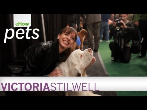 Victoria Stilwell on the New eHow Pets