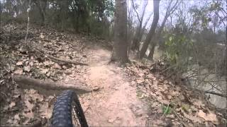 MTB Anthills Bike Trail - Terry Hershey Park - Houston Texas