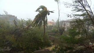 رئيس موزمبيق يكشف عن حصيلة جديدة لضحايا الإعصار إيداي