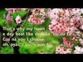 Simi - Duduke (Instrumental with lyrics)