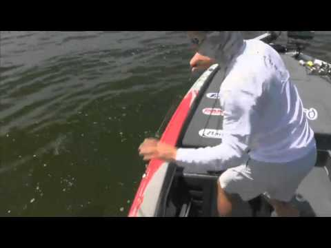 Chad Pipkens fired up over a big Chesapeake bass