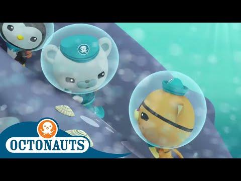 Octonauts - Underwater Stories Compilation   Cartoons for Kids   Underwater Sea Education