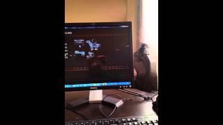 Debut de Lae de roblox lastrike #2