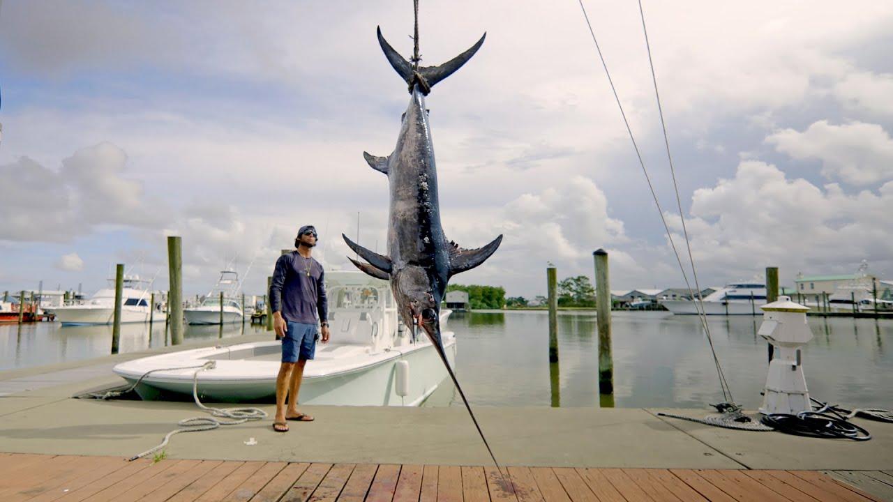 Catching Swordfish in Louisiana