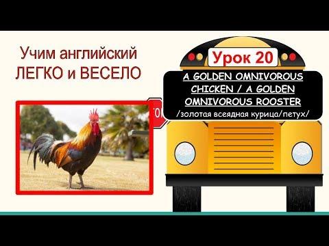 Тема: Золотая всеядная курица/Золотой всеядный петух. Английский для детей и начинающих
