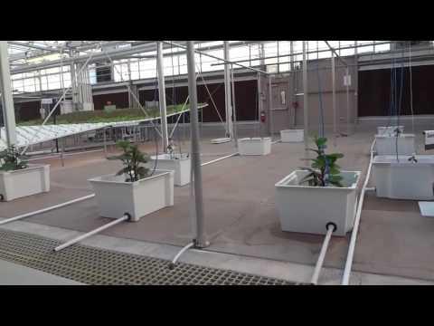 Disney Epcot ride Orlando Florida Agriculture Research