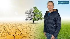 😨 Wird 2020 zum nächsten Dürrejahr  😰❓