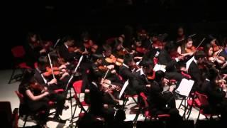 Spring Concert 2014: Serenade, Op.48 (String Orchestra)