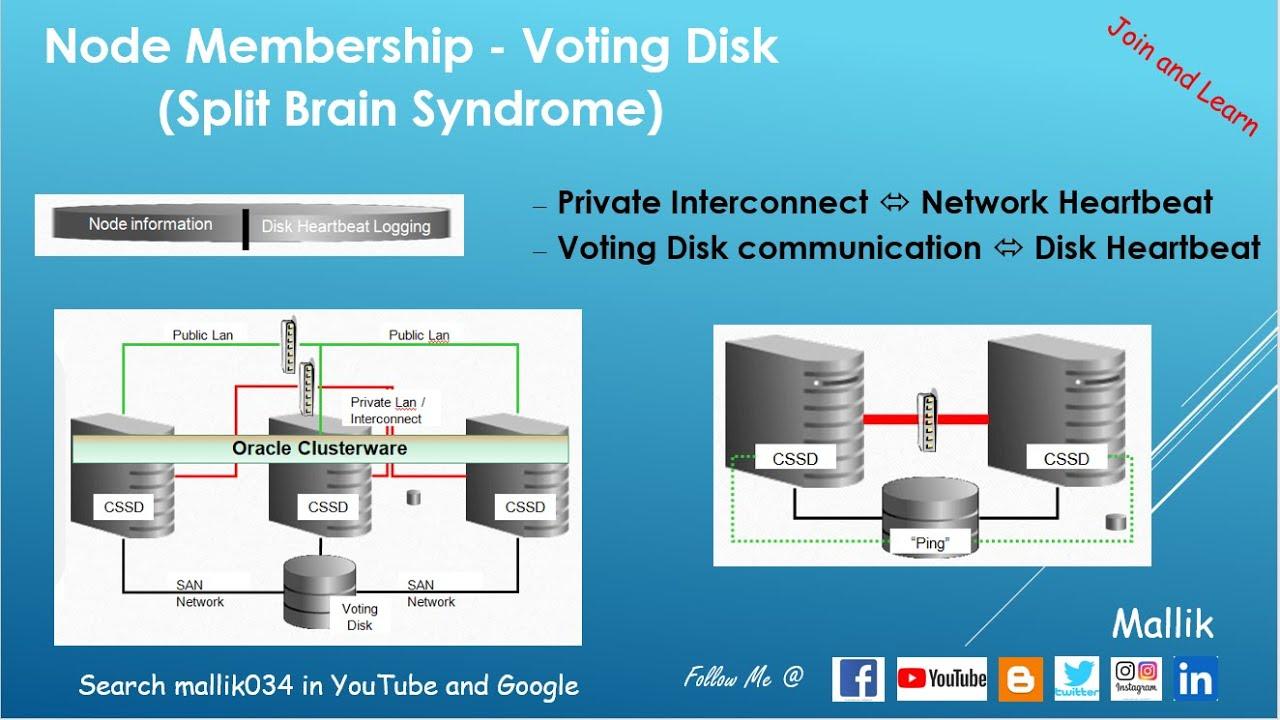 what is split brain in rac