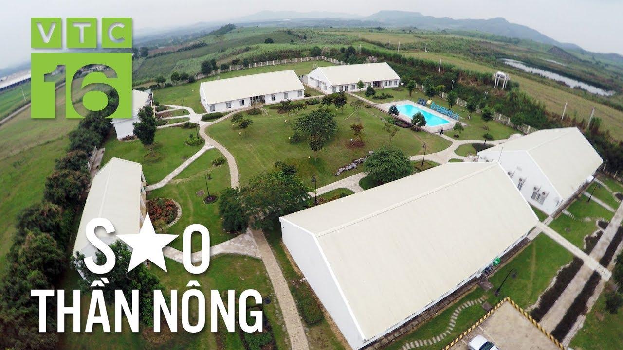 Ngắm trang trại lợn rừng, gà rừng lớn nhất Việt Nam | VTC16