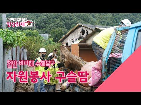 천안시민리포터 유태영님 지역 곳곳이 국지성 호우로 침수되어 막대한 피해와 함께 어려움을 겪고 있습니다. 여러 단체와 시민들로 구성된 자원봉사자들은 지난 5일 ...